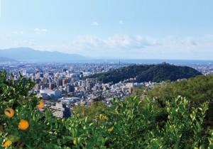 matsuyama_1